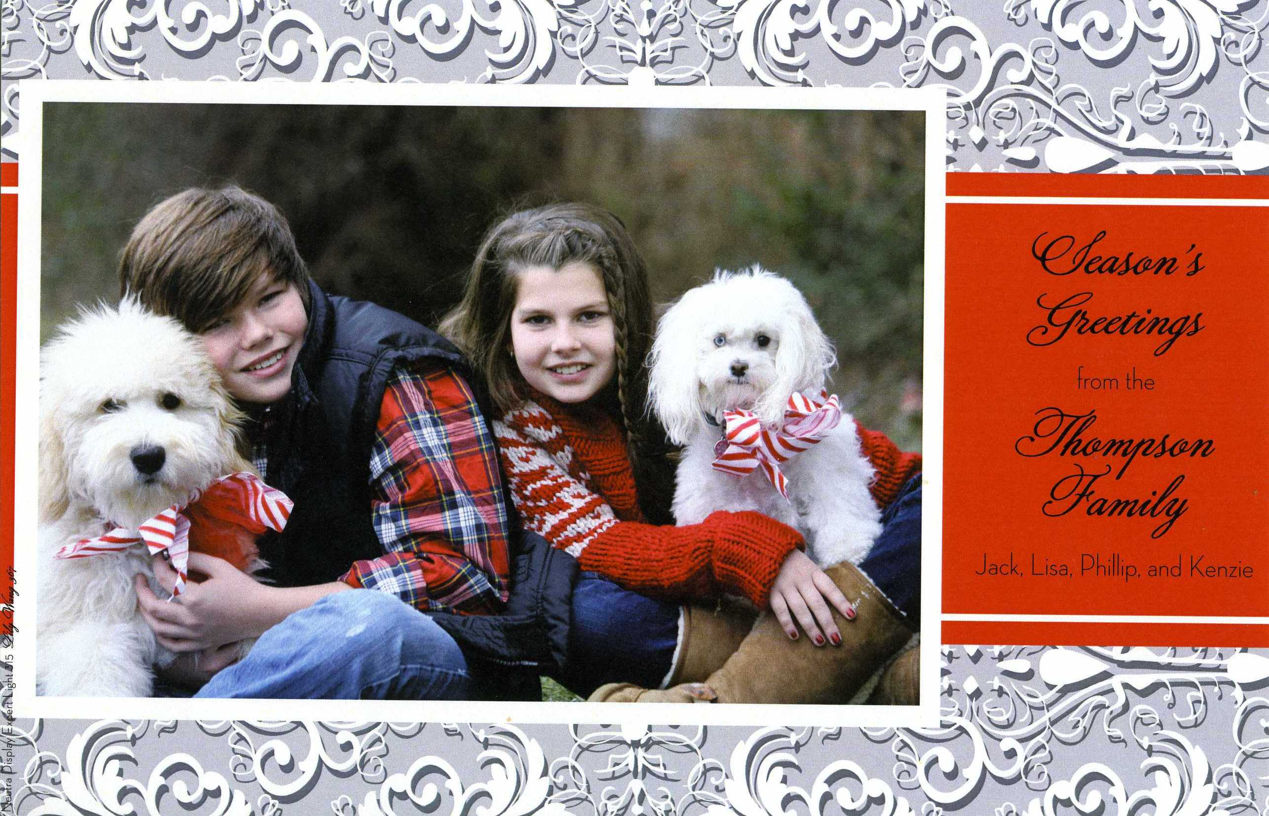 Organza Snow Holiday Flat Card - This elegant holiday flat card has a festive grey and white patterned border with a red text area next to your photo.  What a beautiful way to bring a personal touch to your holiday cards this year!  Includes white envelope.