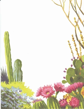a beautiful desert themed laser paper.  this design displays an array desert plans such as, cactus, palo verde trees and pink floral cactus.