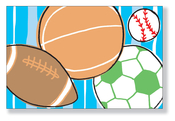 Product Image For Sports Balls