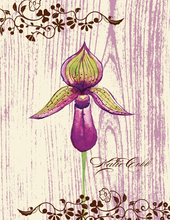 Product Image For Orchid Note Card
