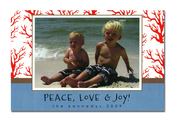 Product Image For Sea Tree Greetings Photocard