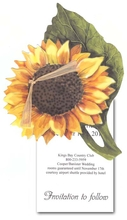 Product Image For Sunflower