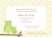 Product Image For Baby Owl Invitation