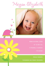 Product Image For Lady Bug Digital Photo Announcement