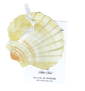 Product Image For Sea Shell Die Cut Invitation
