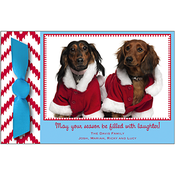 Product Image For Paddywack Frame Holiday Ribbon Photo Card