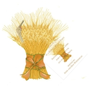 Product Image For Bundle of Wheat Die Cut invitation