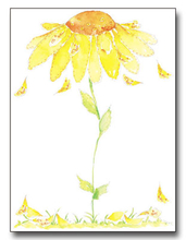 Product Image For Sunflower Paper